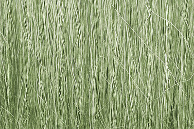Woodland Scenics Field Grass -- Light Green -- .28 oz -- Model Railroad Grass Earth -- #fg173