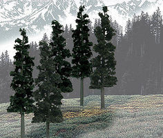 Woodland Ready Made Trees Value Pack Conifer Pine 6-8 (12) Model Railroad Tree #tr1582