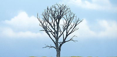 Woodland Premium 4.25 Dead Maple Tree Model Railroad Tree #tr1614