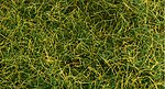 6mm Pull-Apart Static Grass Wild Grass -- Model Railroad Scenery Ground Cover -- #31001