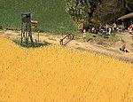 Wheat Field - Kit -- HO Scale Model Railroad Grass Earth -- #1204