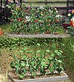 Cucumber & Tomato Plants - Kit -- HO Scale Model Railroad Grass Earth -- #1214