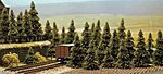 Pine Trees pkg(60) -- N Scale Model Railroad Tree -- #6572