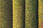 Dark Green 40 x 32'', 100 x 80cm -- Model Railroad Grass Mat -- #7220