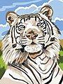 White Tiger Acrylic Paint by Number 9''x12'' -- Paint By Number Kit -- #12068