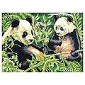Pandas Acrylic Paint by Number 11.5''x15.5'' -- Paint By Number Kit -- #13161