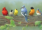 Rail Birds Acrylic Paint by Number 12''x16'' -- Paint By Number Kit -- #78032