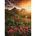 As It Fades 1000pcs -- Puzzle 600-1000 Piece -- #39329