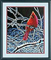 Ice Cardinal -- Paint By Number Kit -- #73-91432