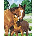 Mothers Pride (Horse with Foal) -- Paint By Number Kit -- #91100