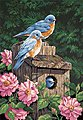 Garden Bluebirds with Birdhouse -- Paint By Number Kit -- #91401