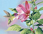 Hibiscus & Hummingbird -- Paint By Number Kit -- #91419