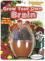 Grow Your Own Brain Kit