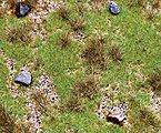 Meadow with Boulders Premium Countryside Segment -- Model Railroad Scenery -- #180476