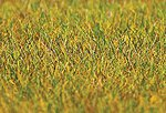 Meadow Static Grass (30g) -- Model Railroad Grass Earth -- #180484