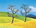 Leafless Premium Trees (2) -- Model Railroad Tree -- #181224