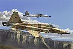 F-5E Tiger II Fighter -- Plastic Model Airplane Kit -- 1/72 Scale -- #hy80207