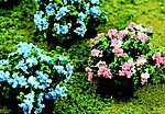 Hydrangea (12) -- HO Scale Model Railroad Scenery Flower -- #95609