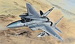 1/48 F15B/D USAF & Israeli Aircraft (2 in 1) (New Tool) (Plastic Kit)
