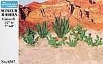 Cactus 1/2''-2'' (18)