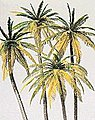 Palm Trees pkg(4) -- Model Railroad Tree -- HO-Scale -- #18600