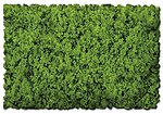Scenic Foams & Ground Textures Coarse Spring Green -- Model Railroad Ground Cover -- #811b