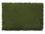 Scenic Foams & Ground Textures Fine Burnt Green -- Model Railroad Ground Cover -- #812c