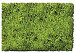 Scenic Foams & Ground Textures Scrub Grass Blend -- Model Railroad Ground Cover -- #882c