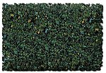 Scenic Foams & Ground Textures Conifer Floor Blend -- Model Railroad Ground Cover -- #883c