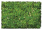 Scenic Foams & Ground Textures Alpine Meadow Blend -- Model Railroad Ground Cover -- #884b