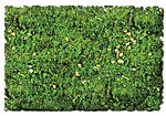 Scenic Foams & Ground Textures Alpine Meadow Blend -- Model Railroad Ground Cover -- #884c