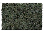 Scenic Foams & Ground Textures Swampy Bog Blend -- Model Railroad Ground Cover -- #887b