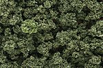 Bushes Clump Foliage -- Olive Green -- Model Railroad Grass Earth -- #fc144