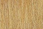 Field Grass -- Harvest Gold -- .28 oz -- Model Railroad Grass Earth -- #fg172