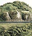 Landscaping Learning Kit -- Model Railroad Scenery Supply -- #lk954