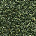 Turf Fine Blended Green 30 oz -- Model Railroad Grass Earth -- #t49