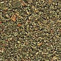 Turf Fine Blended Earth 30 oz -- Model Railroad Grass Earth -- #t50