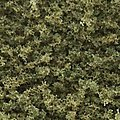 Turf Coarse Burnt Grass 12 oz -- Model Railroad Grass Earth -- #t62