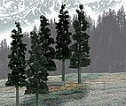 Ready Made Trees Value Pack -- Conifer Pine 6''-8'' (12) -- Model Railroad Tree -- #tr1582