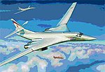 Tu160 Blackjack Russian Supersonic Bomber -- Plastic Model Airplane Kit -- 1/144 Scale -- #7002