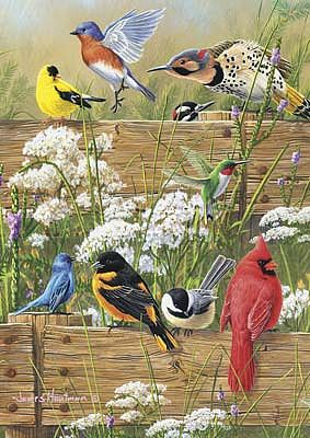 Buffalo Games Hautman Songbird Menagerie 300pcs -- Jigsaw Puzzle 0-599 Piece -- #2496