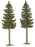 Busch Spruce Trees pkg(2) - 5-3/16 HO Scale Model Railroad Tree #6136