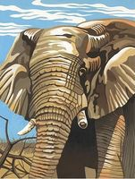 Colart Elephant Acrylic Paint by Number 9x12 Paint By Number Kit #11013