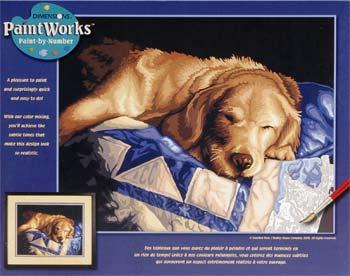 Dimensions Afternoon Nap -- Paint By Number Kit -- #91300
