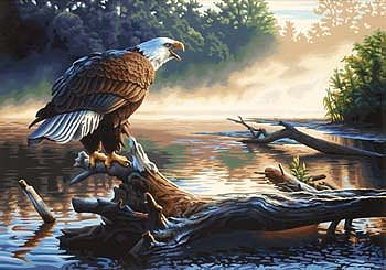 Dimensions Eagle Hunter -- Paint By Number Kit -- #91379