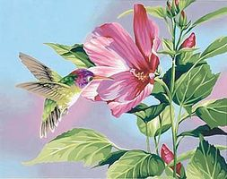 Dimensions Hibiscus & Hummingbird Paint By Number Kit #91419