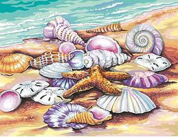 Dimensions Shells (Seashore) Paint By Number Kit #91526