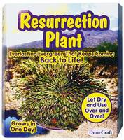 Dunecraft Resurrection Plant Kit