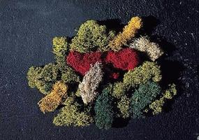 Faller Lichen (5 Assorted Colors) Model Railroad Grass Earth #170730