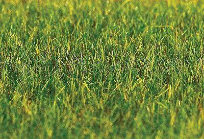 Faller Gmbh Green Static Grass (30g) -- Model Railroad Grass Earth -- #180485